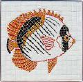 Lineolatus Tropical Fish Mosaic
