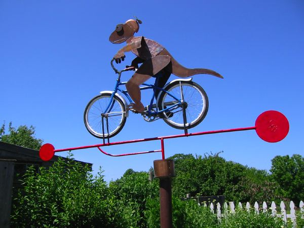 Cycling Salamander commissioned sculpture